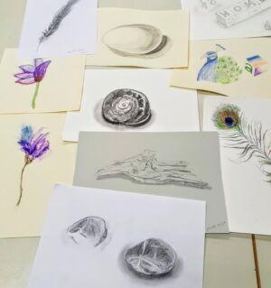 7. Zeichnen Und Kolorieren